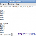 c read and write binary file